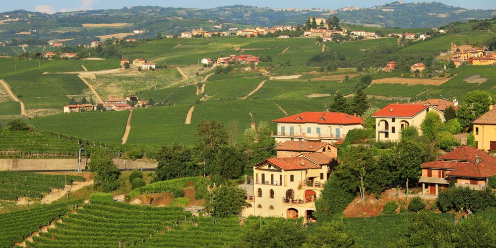 vingaard-udsigt-piemonte-italien