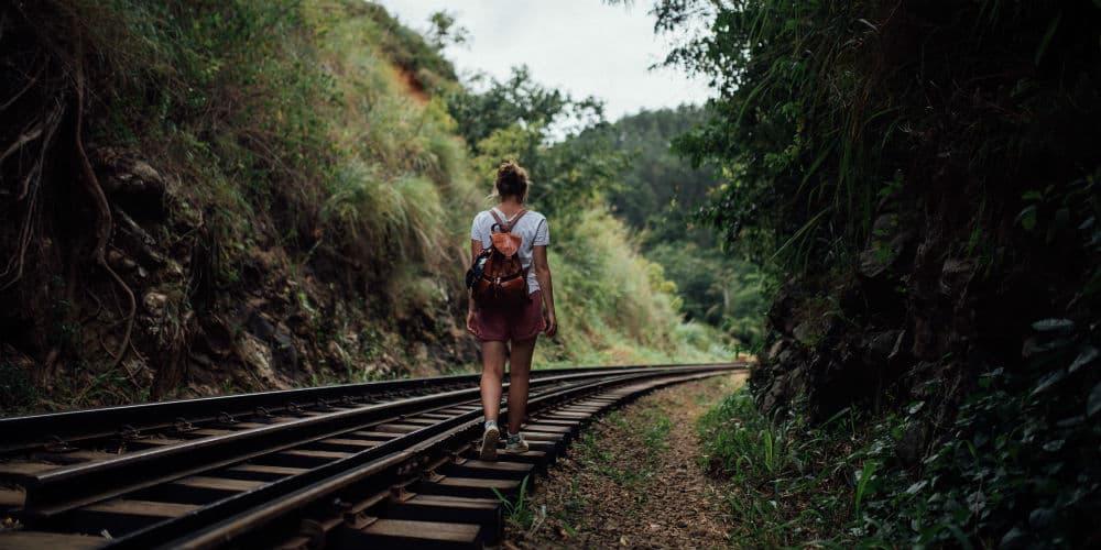 Rejs til Sri Lanka og tag på tur rundt i den berømte trekant
